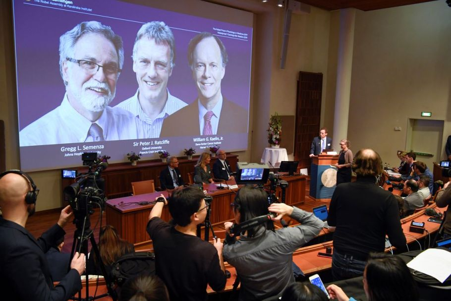 Nobel de Medicina premia estudo sobre adaptação das células ao nível de oxigênio - Bernadete Alves