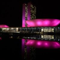 Congresso Nacional alerta para importância do diagnóstico precoce do Câncer de Mama