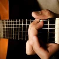 Dia do Músico: talentos infindáveis de criatividade