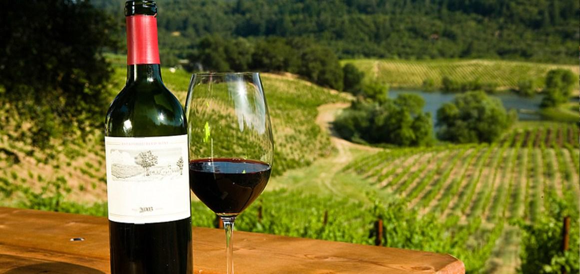 Plovdiv | Filibe Mavrud şarabı – Alıntı