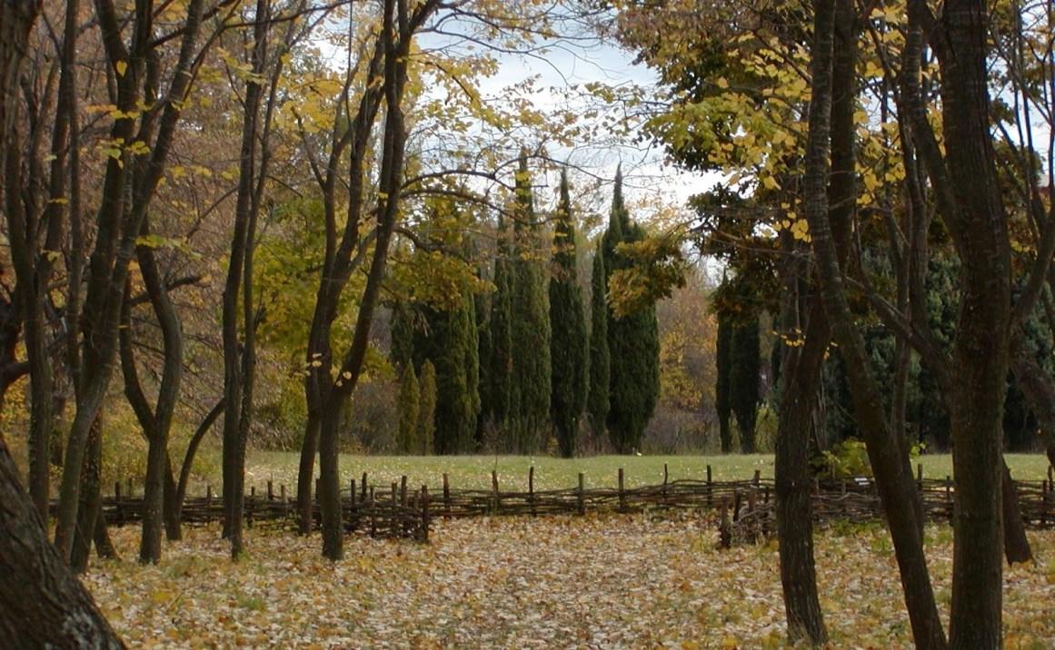 Varna Üniversitesi Botanik Bahçesi