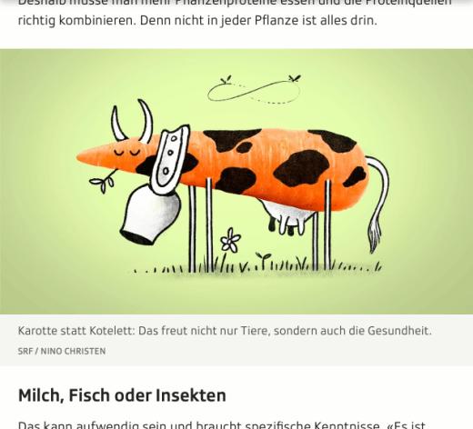 Screenshot Ausschnitt Artikel Fleischlose Ernährung
