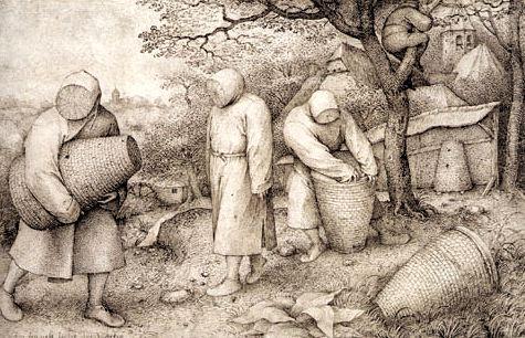 Pieter Brueghel et les abeilles