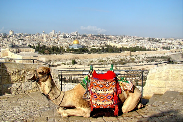 Modern view Mount of Olives
