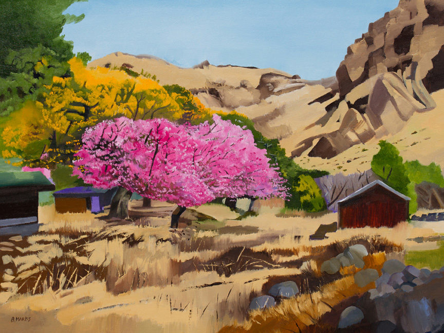 Spring in Cochise Stronghold