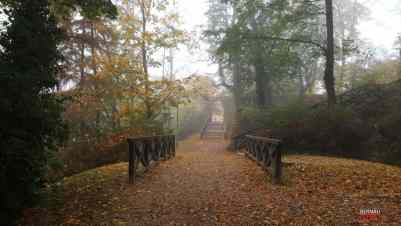 Bernau - Barnim: Guten Morgen im Nebel des heutigen Mittwochs