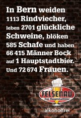 106737_F200_Felsenau_2.indd