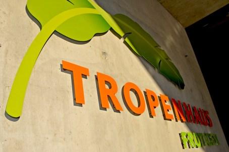 tropenhaus_frutigen_rapgraphics4