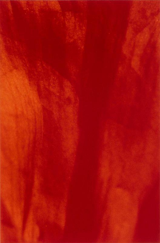 ohne Titel (057) - 1999