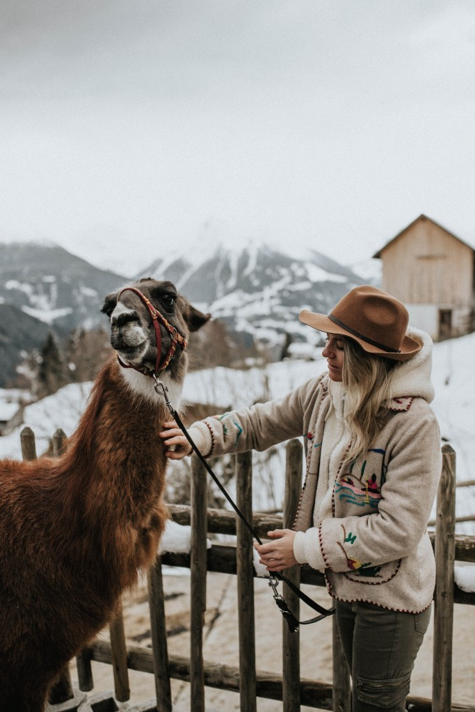 Bergerlebnis Lama-Trekking