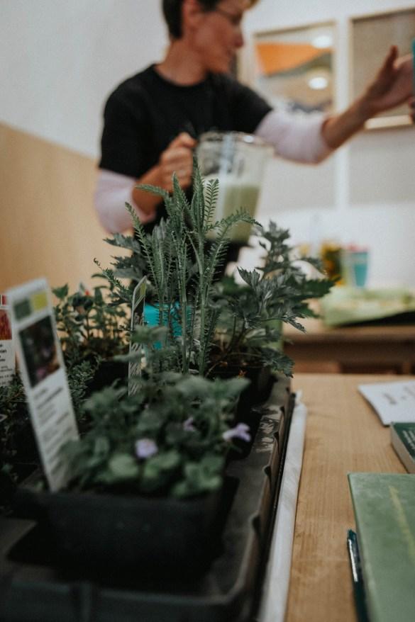 Grüne Erde-Welt Gartenmarkt