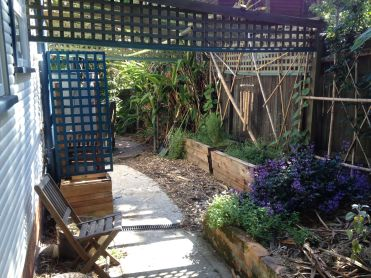 """The """"solar pergola"""" last year - looking south west"""