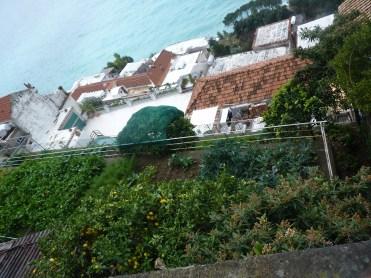 Vertiginous veggie patches of Positano
