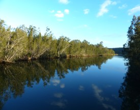 Narrabeen Lake