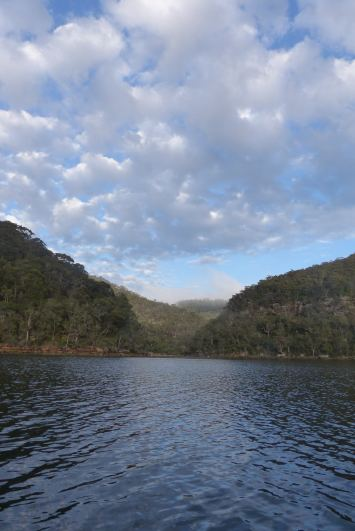 Looking back towards Berowra