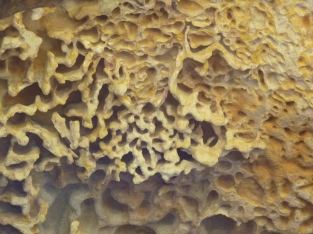 Honeycomb formations in a cave above Bujwa Bay