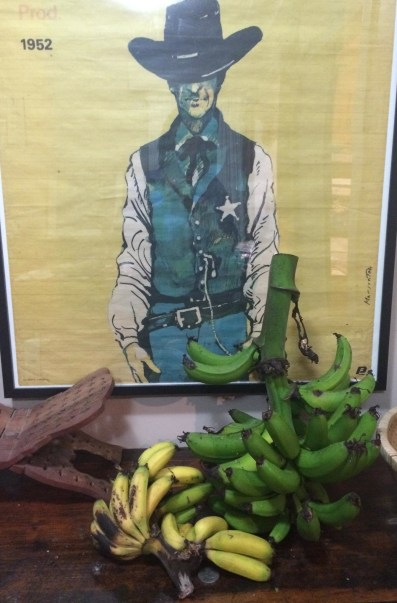Gary Cooper is quite impressed with our collection of home grown bananas