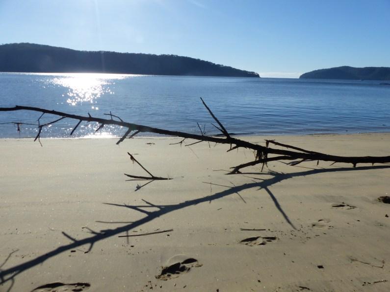 Storm detritus on Gunyah Beach