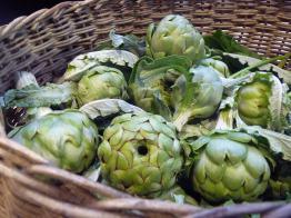 Last year's artichoke crop... sniff