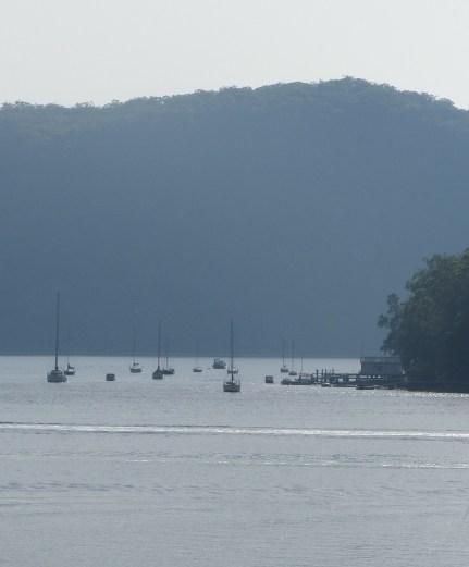 Sailing boats north of Dangar Island