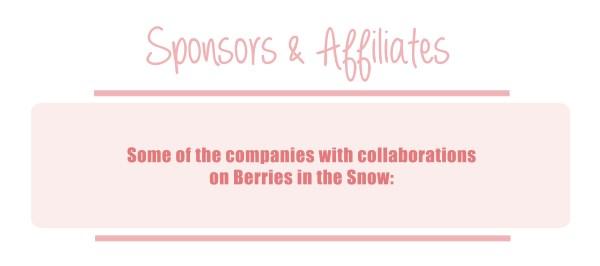 media kit berries in the snow