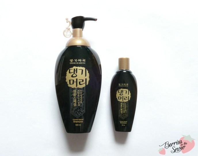 Daeng Gi Meo Ri Oriental Special Shampoo