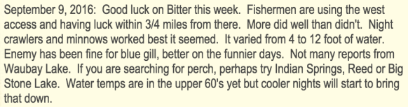 funny fishing report