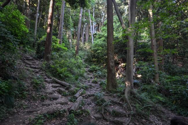 Kamakura-19