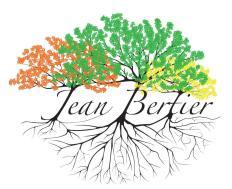 Jean Bertier Coaching médiation Magnétisme et résolution émotionnelle