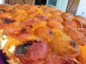 Samedi 20 juillet : Tarte à l'abricot