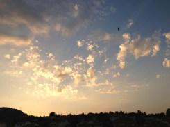 Vendredi 26 juillet : magnifique ciel