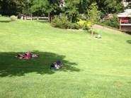 Vendredi 2 août : canicule à Clermont, tout le monde cherche l'ombre