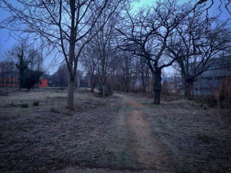 Lundi 19 janvier 2015 : triste matin d'hiver