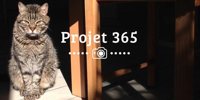 Les photos de mon projet 365 2015 #8