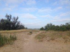 Direction la plage lors de mon jogging
