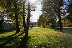 2015-10-31-automne1