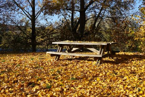 2015-10-31-automne2