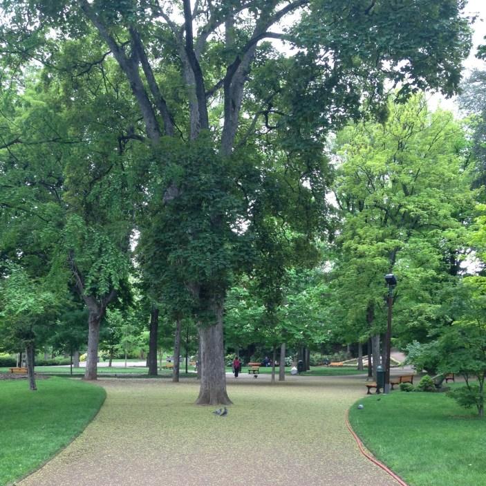 2016-05-12-jardin-lecoq