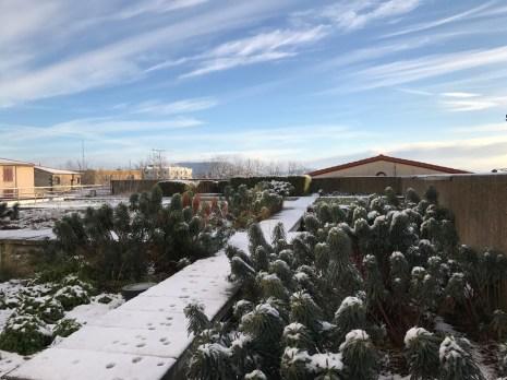 2017-01-15-neige-rues-3