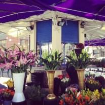 Jeudi 21 mars : fleuriste à Toulouse