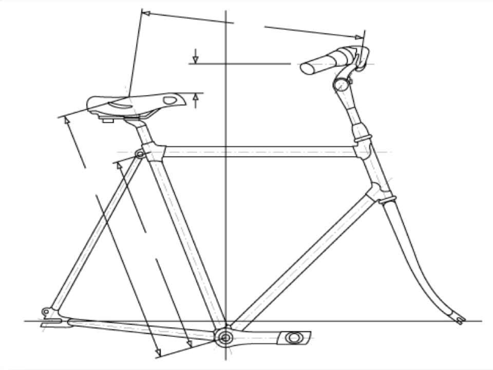Bike-fitting-fietsmeting_Berts-Bike-Shop-Meppel_01