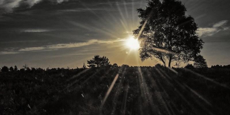 Viral Matahari Terbit di Utara, BMKG: Pelajaran Geografi SMP