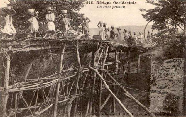 sw Foto-Postkarte: Brücke aus Holzstämmen