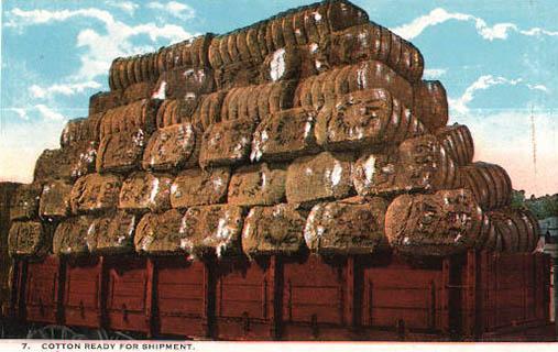 koloriertes Postkarte: viele Baumwollballen auf einem Container