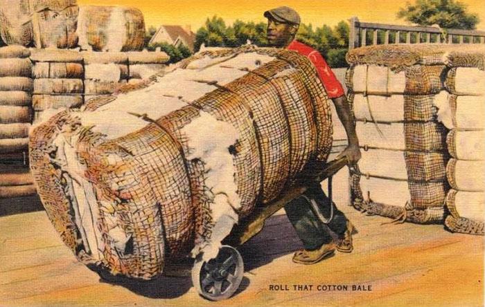 Baumwollballen werden mit Karren abtransportiert