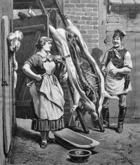 metzger_metzgerin_1882