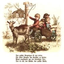 Farbbild: Kinder spielen im Garten Kutschfahrt, Ziege vor Bollerwagen gespannt, auf Brett als Kutschbock ein rot pulloverter Junge mit Peitsche, im Wägelchen vier kleine Kinder eng gedrängt