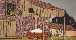 Baumwolle, cotton, Pferdekarren