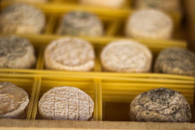Foto: mehrere leckere Schimmelkäse in einem Holzkasten