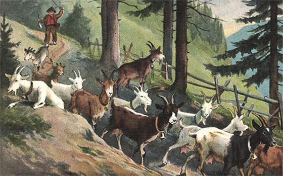 Farblitho: Hirte treibt Ziegenherde auf Waldweg ins Tal